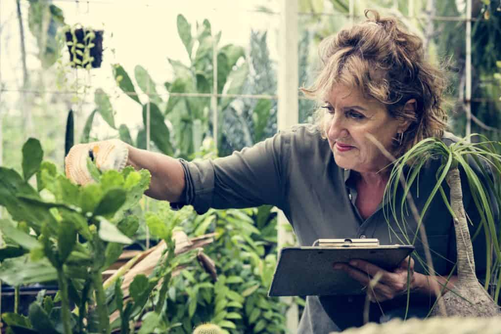 Fine Gardening Is Good For Your Health: Reasons