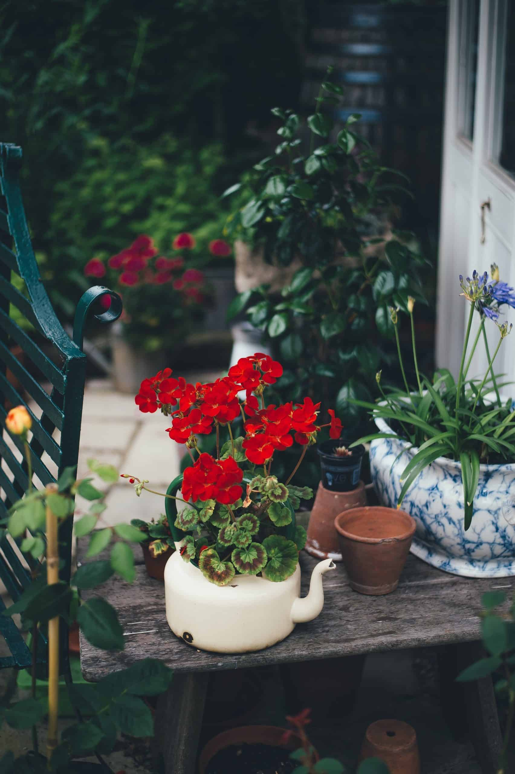 Get The Most From Your Garden Tools For Years To Come