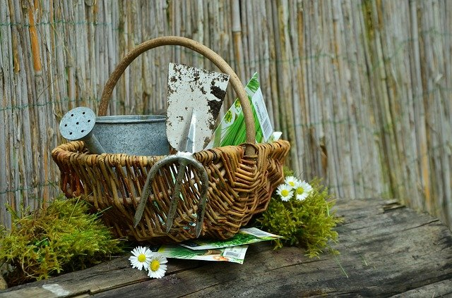 A vase of flowers sitting on top of a wooden fence